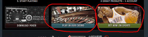 Bodog Casino and Sports